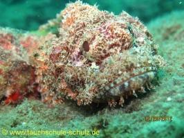 Thailand www.aqua-divers.de