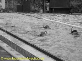 Training Flipper 1 2009